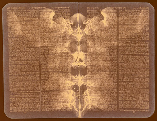 rorschach bible pages